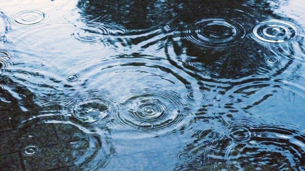 今年もまた梅雨の季節がやってまいりました。